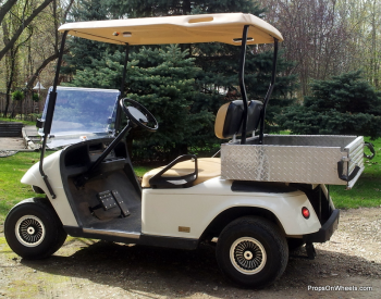 Our Golf Cart
